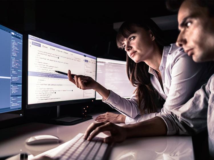 Trabajos Freelance: Desarrollador Web, Móvil y de Software