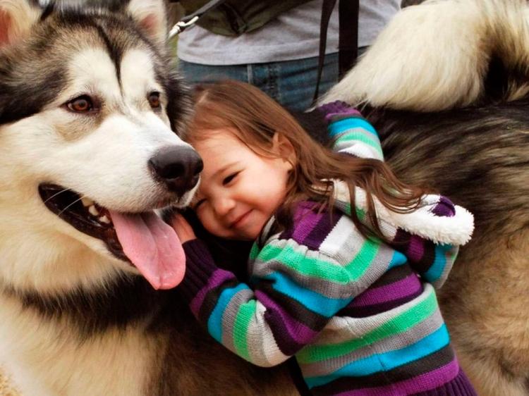 Mascotas compartidas: Encontrar un segundo cuidador